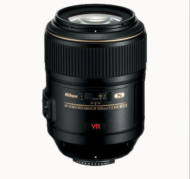 Top 4 best macro lenses for Nikon DSLRs